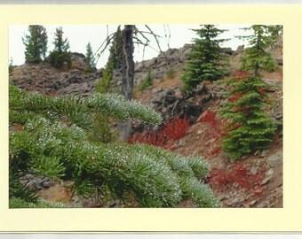 MORNING DEW, Elkhorn Crest - Original Outdoor Scenery / Local Artist Digital Photo - Blank Photo Card Twin Fold Design - In Stock
