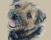 Handpainted pet portrait A5 size
