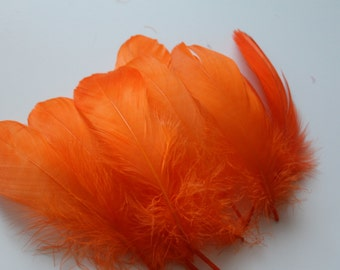 Orange Nagoire Feathers / 10 Loose Feathers / 4-6 inches