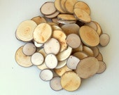 Wood Slices , 2 - 4 inches in diam. - 100 Blank White Tree Branch slices,Drilled - Tags Supplies - Wedding Supplies - Jewelry Supplies.