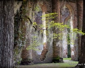 Mysterious Architecture from Old Sheldon Church Ruins, South Carolina #1
