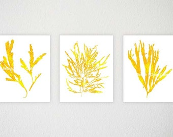 Bedroom Art, Yellow Beach Decor, Yellow Gray Bedroom, Set Of 3, Yellow Part 87