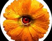 Glass Cabochon - Orange Flower with Eye Detail