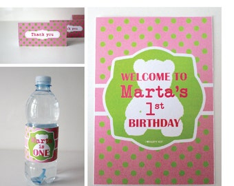 Teddy bear Party kit  birthday