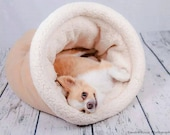 Small Dog Bed dog cave bed burrow bed pet bed snuggle sack Chihuahua, Dachshund  Chinese crested dogs Pet Pizzaz