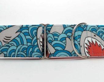 Shark Bait Dog Collar (Martingale, Buckle or Tag)