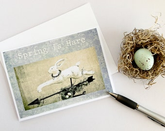 Spring greeting cards, artisan greeting cards, rabbit, bunny, bird nest, bird eggs, faded blue, pale yellow, photography