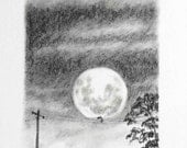 Original charcoal drawing Moon and Possum black white