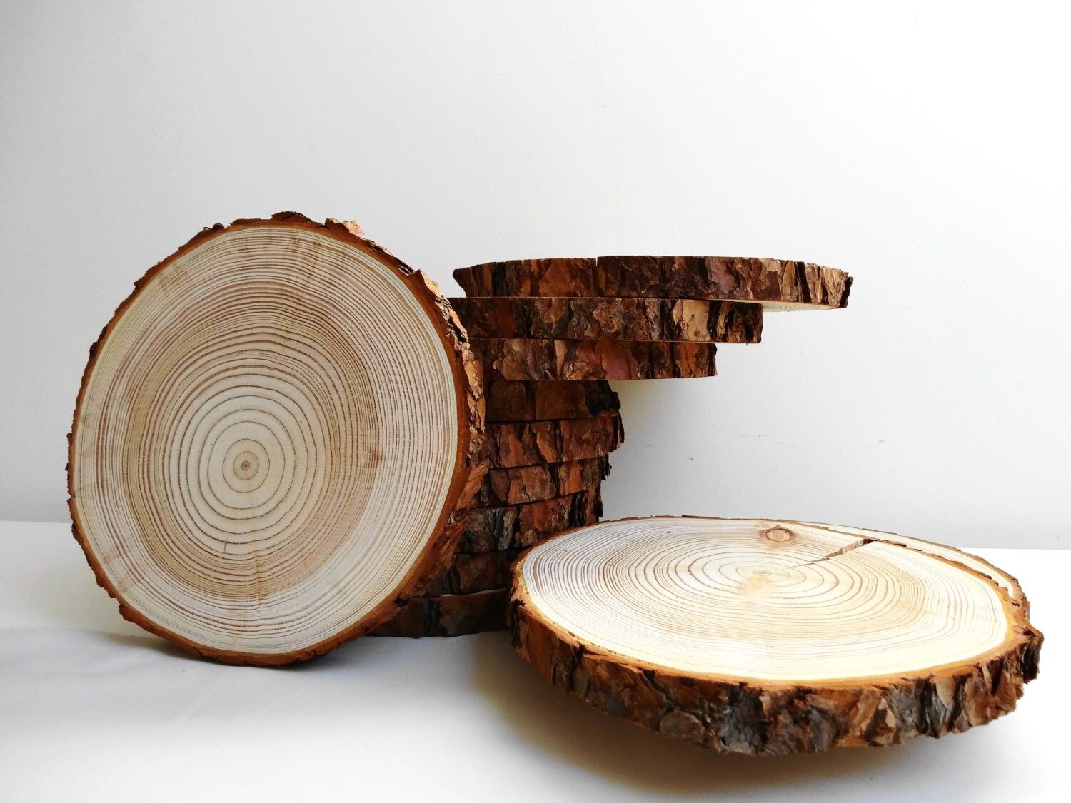Tree trunk slices gallery of rustic pine tree table tree for Wood trunk slices