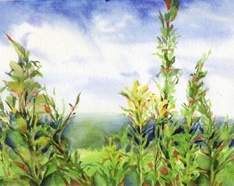 """Watercolor grass painting - original landscape painting - """"Landscape with grass"""", paper"""