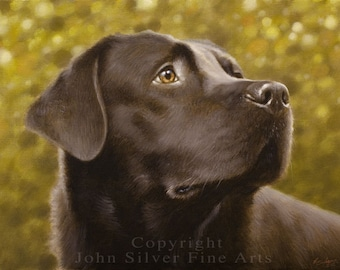 Special Offer! Custom Pet Portrait Head & Shoulders Dog Oil Painting  by award winning UK artist JOHN SILVER. 16 x 12 inches