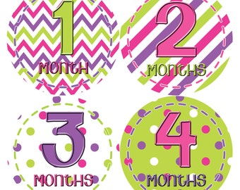Monthly Baby Stickers Baby Month Stickers Baby Girl Month Stickers Monthly Photo Stickers Monthly Milestone Stickers 278