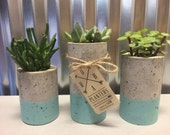 "Concrete Succulent Planters. Urba planters (set of 3). Blue.  Enter Promo code ""LOVE1"" to recieve 10% off entire order."