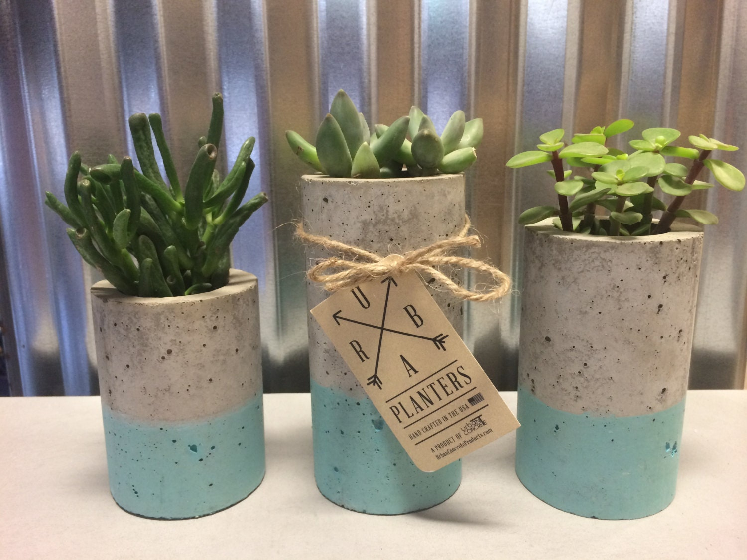 Concrete Succulent Planters Urba Planters Set Of 3 By