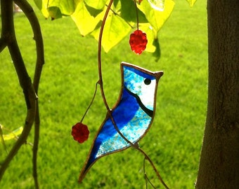 Blue Jay stained glass suncatcher