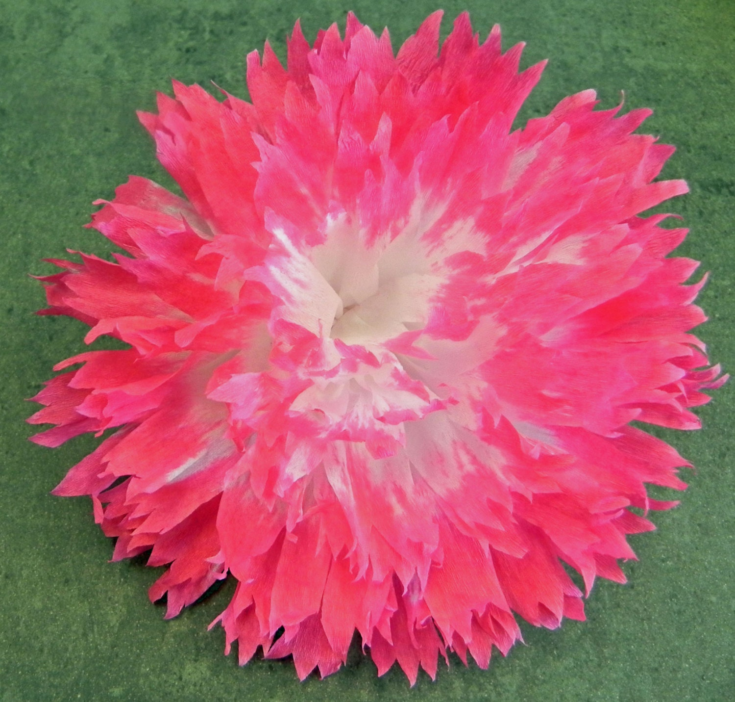Mexican Crepe Paper Flower Hair Clip 2 tone White Pink