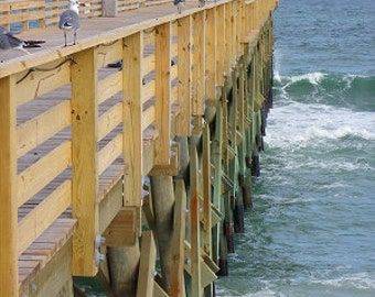 Seagulls on Crystal Pier - Wrightsville Beach, NC  {Instant Photo Download}