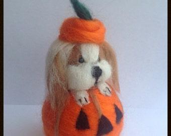Needle felted Shih Tzu in  a pumpkin