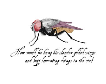 Fly - Insect - Nursery Art - Wall Art - 8x8 Fine Art Print - Shakespeare Quote - Titus Andronicus - Shakespeare's Menagerie