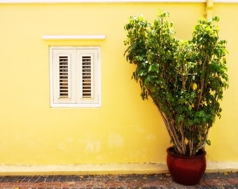 Window to a Room, Yellow Wall with Shuttered Window, Willemstad, Curacao, Caribbean, Fine Art Photograph for Your Home and Office Wall Decor