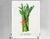 """20"""" x 27"""" PRINT - Asparagus - high quality fine art print"""
