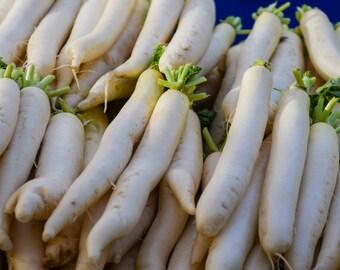Miyashige Daikon Radish Seeds (~125): Certified Organic, Non-GMO, Heirloom Seed Packet