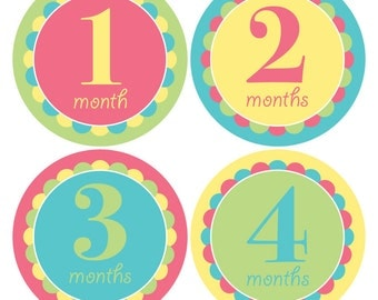 Monthly Baby Girl Stickers, Baby's First Year Stickers, Monthly Photo Sticker, Baby photo album, Month to Month Stickers, Girl Baby Stickers