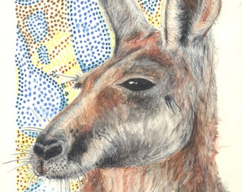 Limited quality prints of my original Australian Native Kangaroo drawing