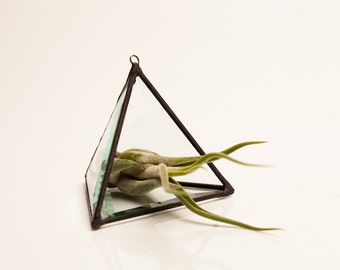 Pyramid Geometric Stained Glass Air Plant Terrarium