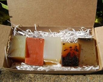 ORGANIC SOAP SAMPLER: Citrus & Herbs, Moisturise, Deep Cleanse, Detox, Wake up. 50g bars. Vegan friendly.