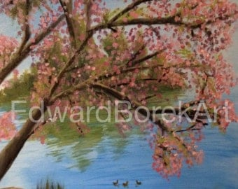 Ducks in a Pond under a Cherry Blossom