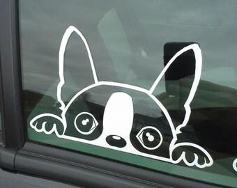 The Dex G (Boston Terrier) Window Decal