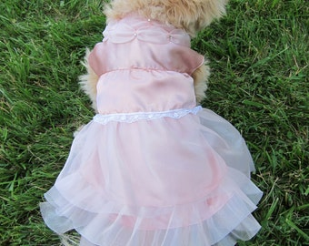Complete Custom  Wedding or Special Event Dress For Dogs