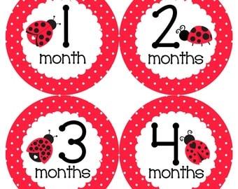 Ladybug Monthly Onesie Stickers