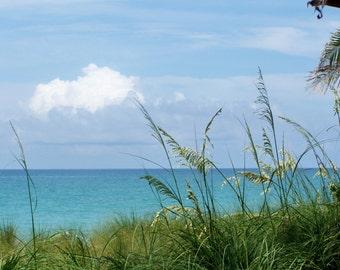 Beachy Summer Day