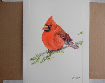 Original Water color painting, Red angry bird, 7x10in, red, animals, cute bird, branch,