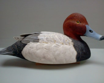 Decoy carving of a drake redhead done in basswood.