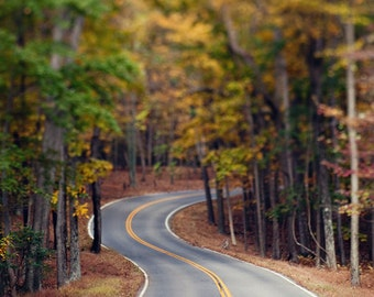 Fine Art Photo, Windy Road, Autumn, Road Trip Photo, Sunday Drive, Trees, October, Rural Maryland, Mountain Road, Travel Art, Journey