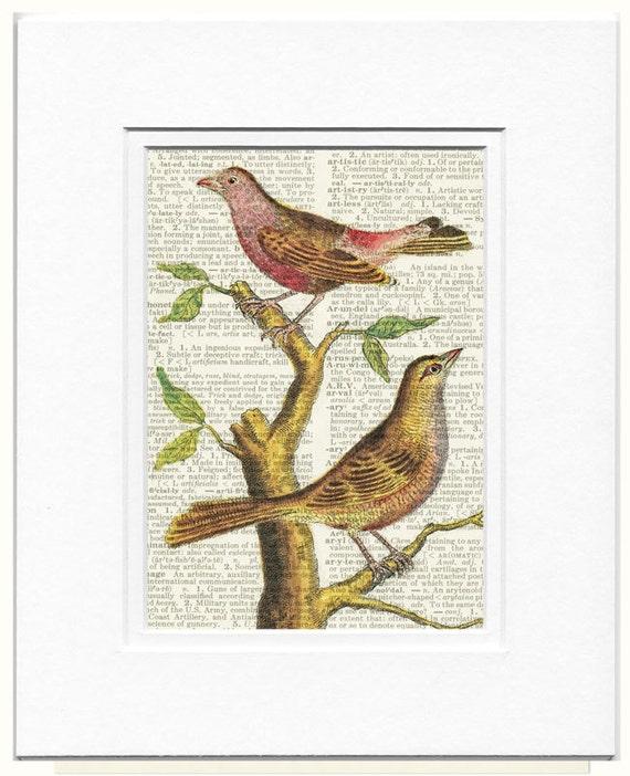 Bird, vintage birds III print