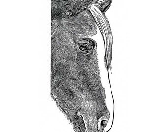 Horse wood engraving