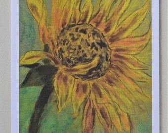 Sunburst Sunflower Floral Art Note Cards  By Cori Solomon