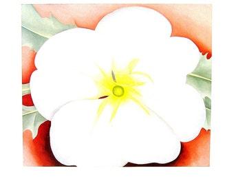 Georgia O'Keeffe Print - Vintage 1987 Botanical Print - White Flower on Red Earth - Large 16 x 13