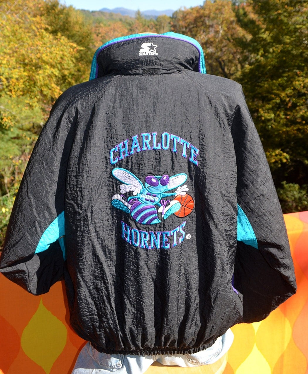 https://www.etsy.com/listing/166596962/vintage-90s-starter-jacket-charlotte