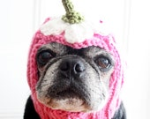 Upside Down Daisy Dog Hat - Pug Hat - Holiday Gift for Dog Lovers - Dog Clothing - Pet Apparel