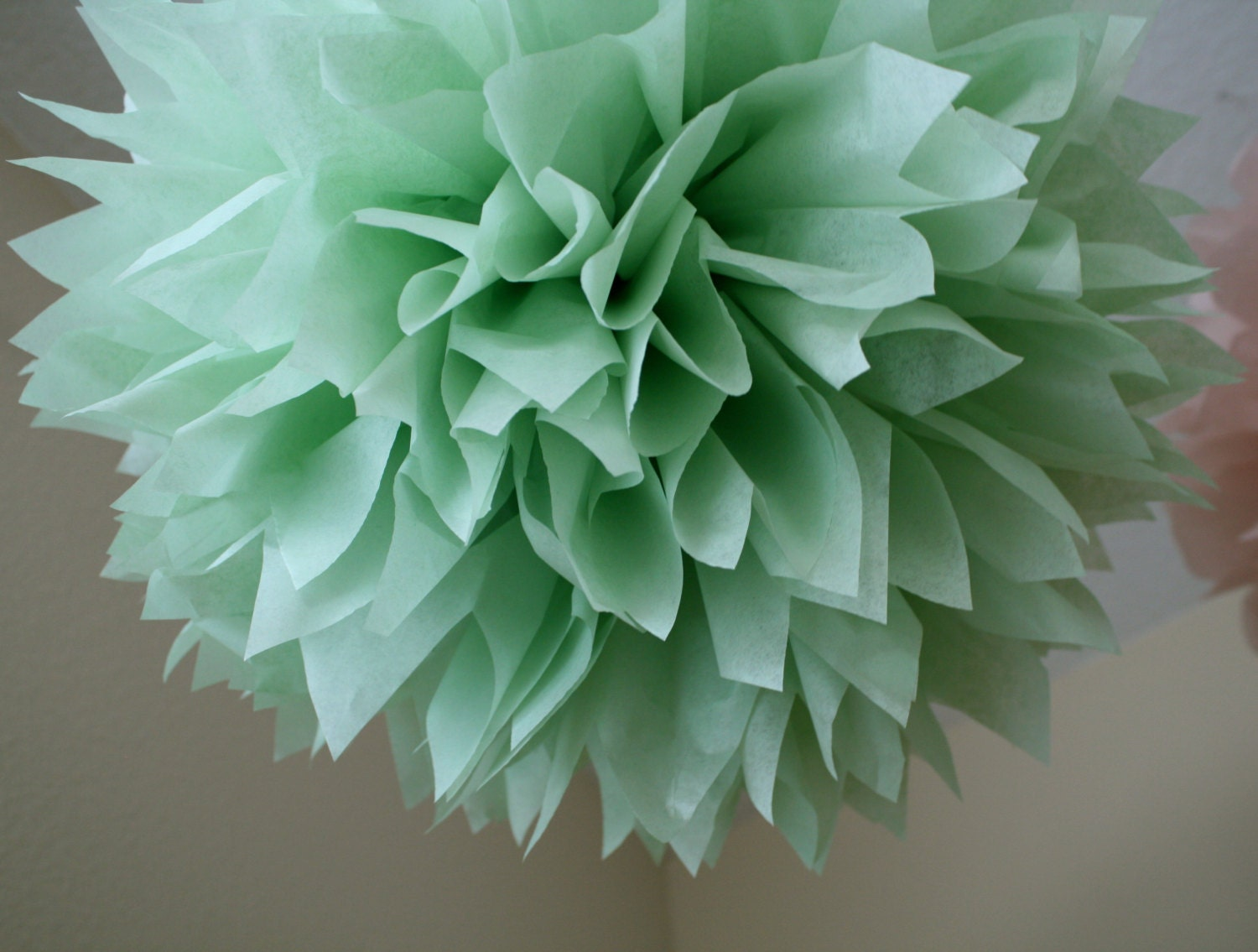 celery 1 tissue paper pom pom diy wedding decorations. Black Bedroom Furniture Sets. Home Design Ideas
