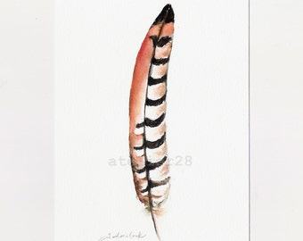original ink and watercolor painting of a pheasant feather