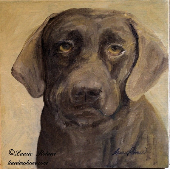 pet portrait brown lab by Laurie Rohner