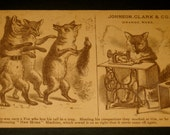 Victorian Fairytale Storybook Fox Sewing Antique Trade Card