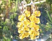 Yellow translucent swarovski dangling earrings