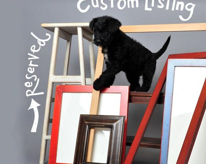 Custom Listing Reserved for Leigh